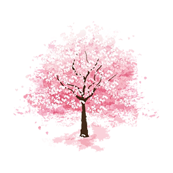 cherry_blossom_2.png