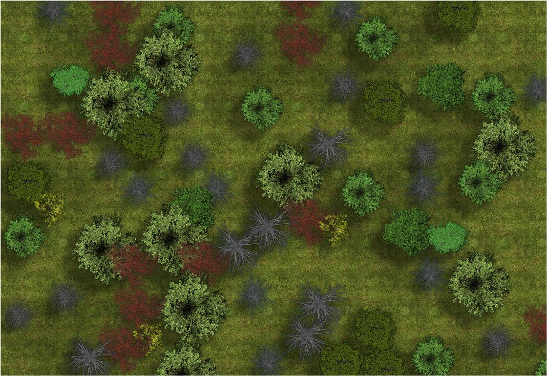 Kingmaker-Stolen Lands Forest BM2.JPG