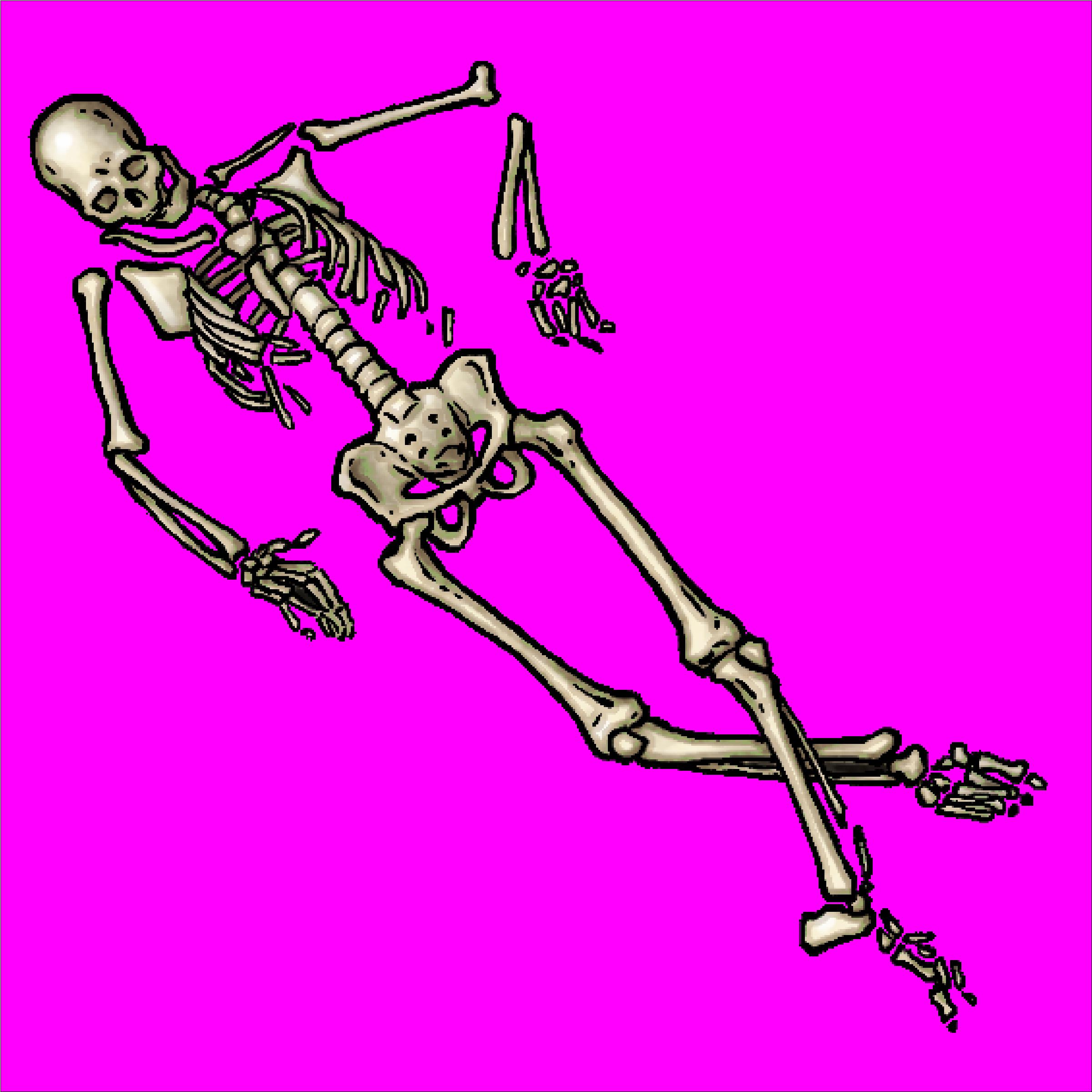 SkeletonA_lg.PNG