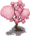 cherry_blossom_tree_2.png