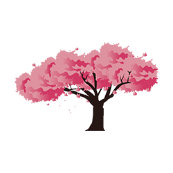 cherry_blossom_3.png