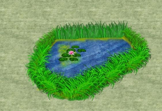 pond Test.jpg